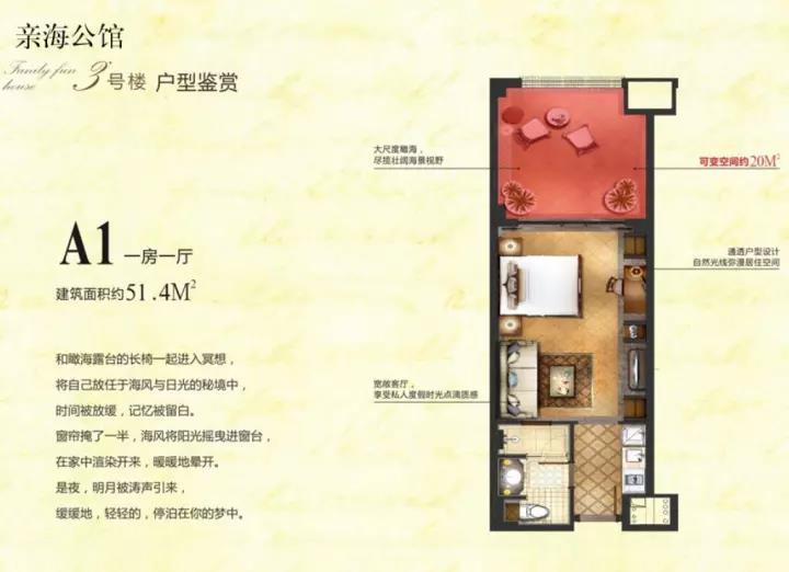 A1一房一厅一卫建筑面积51.4㎡